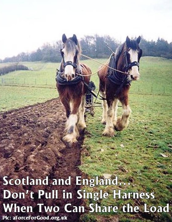 Scotland and England Don't Pull in Single Harness.