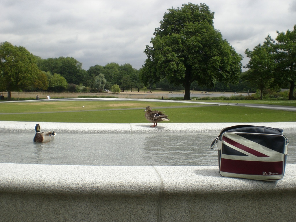 Princess of Wales Memorial Fountain, Hyde Park, 19-6-15. Copyright Alistair McConnachie